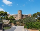 Palma City & Valldemossa Tour